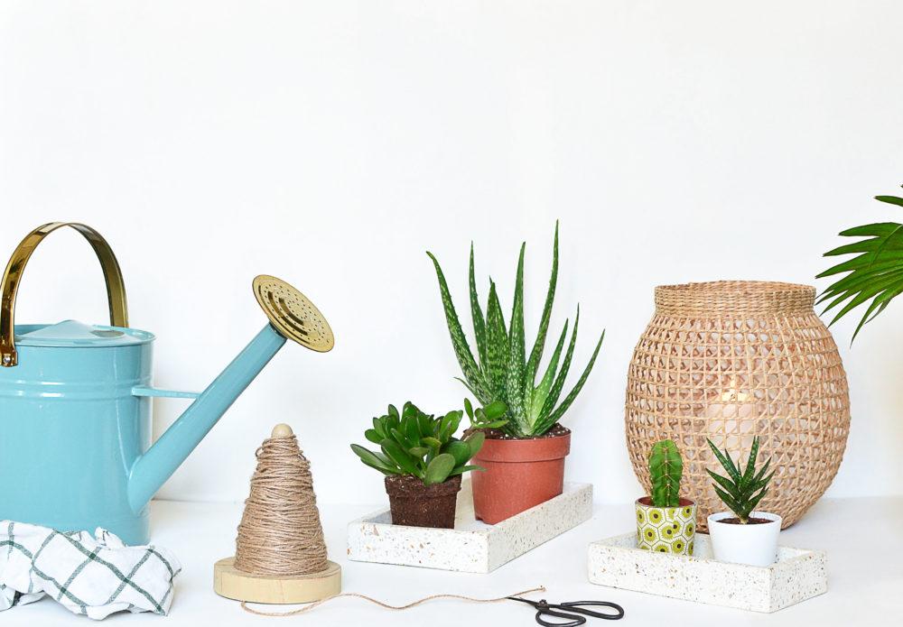 arrosoir en zinc arrosoir en zinc vert et or pour jardiner avec classe. Black Bedroom Furniture Sets. Home Design Ideas